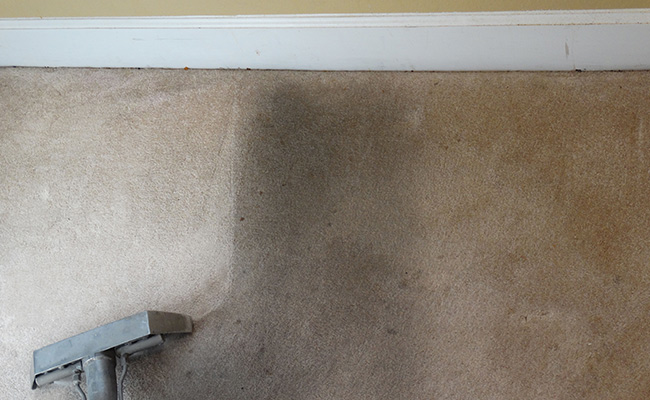 Move Out Carpet Cleaning Modesto CA